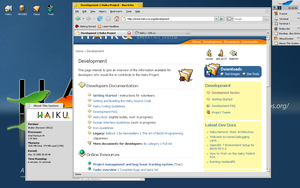 Browsing web with firefox by beos-zealot