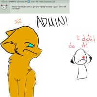 Question 44 by Ask-Stephano-Cat