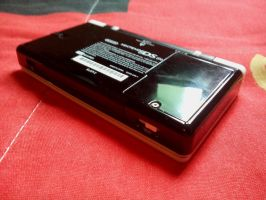 Custom White and Black DS Lite - Bottom by Diego9000