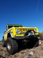 Yella Bronco by Swanee3
