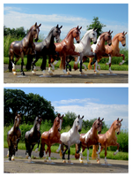 Breyer - Salinero Conga by The-Toy-Chest