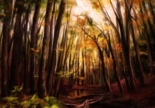 Forest Study by artclee