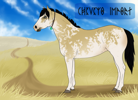 Cheveyo Import 16 by Catzei