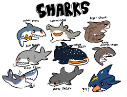 Sharks are precious cinnamon rolls too pure by S-pace-dorit0