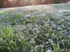 The Frost is Back by Nick-Spratt