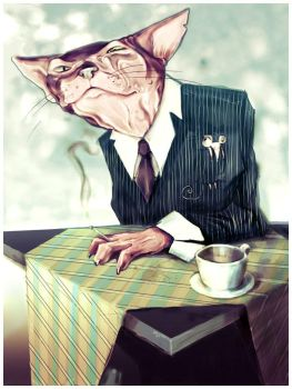 Cat bussiness by yadou