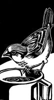 Sparrow, linocut by Velouriah