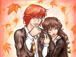 Ron and Hermione by seasaidh by Its-So-Obvious