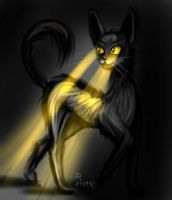 Cat flash light by Nastea-AnyMash