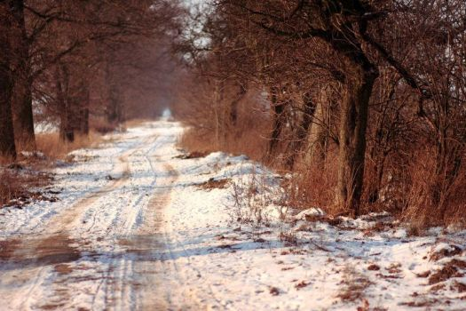 Winter 2012 - 24 by Eufrosis