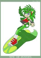 MANIC - Sonic Riders Style by carriepika