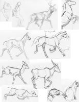 Sketches 2 by lennan