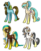 Four Pony Adopts by Black-Rose-Emy