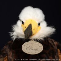 Karstadt - Bald Eagle plush by dapumakat