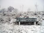 Winter: lonely bench by yourstock