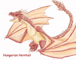 HP: Hungarian Horntail by DairuAnubis