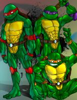Turtles Mutant Ninja by DramaShizza