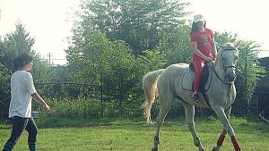 riding a horse6 by 99andreea