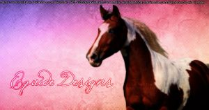 Paint Horse Pic by EquideDesigns