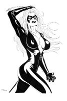 Black Cat Unshaded by ESO2001
