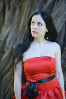 Red Satin Portrait 25 by Anariel-Stock