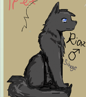 Riaz by crystalleung7