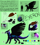 Exeron Reference Sheet by Red-Dragon-Blaze