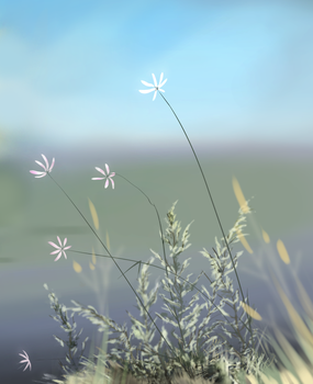 flowers on a hill by natarelki
