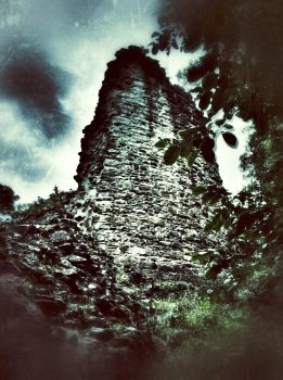 Ruined Castle in the Woods by minbean