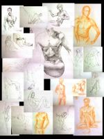 Figure Drawings- Apr 08 by perplexilexi