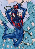 Ultimate Spider-Man ATC by ibroussardart