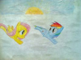 Fluttershy and Rainbow Dash by 10art1