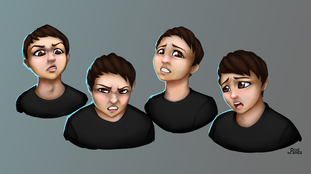 Expressions by Leadpanda