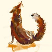 Fox-Water-colour by Disty