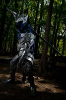 Artorias The Abysswalker by XSinstarX