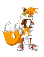 Tails at the age of 15 by jaguarcats