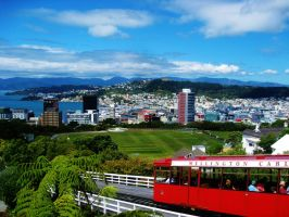 NZ - Trolley by MariMcGee