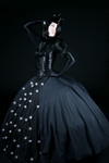 Magic Flute:Queen of the Night by Rosenbraut