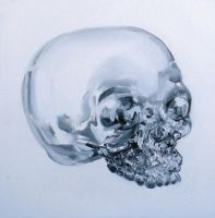 the mystery of crystal skulls by gnomzdziupli