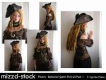 Pirates - Barbarian Queen Portrait Pack 1 by mizzd-stock