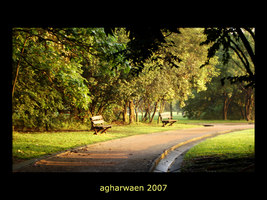 Afternoon Benches by agharwaen