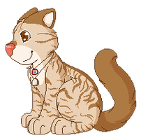 .:CP:. scruffycat171 by CollectionOfWhiskers
