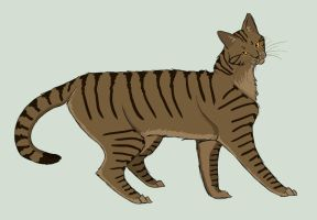 Streakpelt by Lithestep