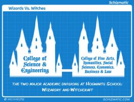 Wizards Vs. Witches by schizmatic