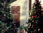 Past Christmases by Rowz-vamp