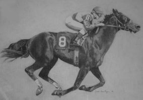 HORSE AND JOCKEY by graphitemyers