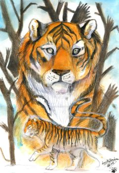 Endangered#1 Siberian Tiger by LuckyStarhun