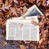 Opinions Daily by wiebkefesch