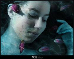 Wild Rose by Syllie