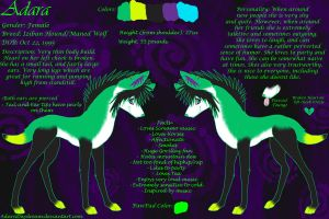 Adara Reference Sheet 2011 by AdaraDaydream